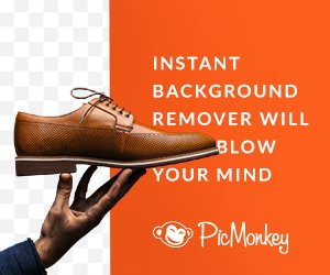 picmonkey background remover